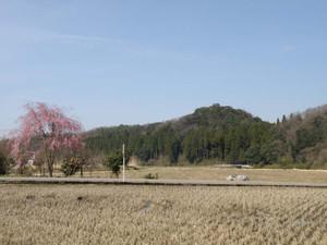Houounoyamaweb